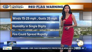 10News Pinpoint Weather Midday with Melissa Mecija - Video