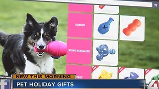 Pet holiday gifts - Video