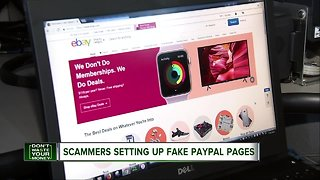 Scammers setting up fake Paypal pages