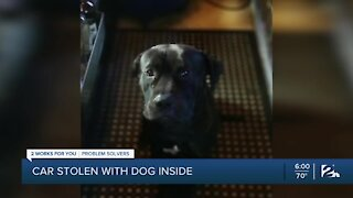 Tulsa woman desperate to be reunited with her stolen dog