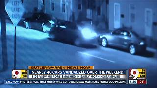 38 cars in Franklin area vandalized over weekend, police say - Video