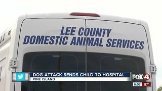 Child airlifted to hospital after dog attack