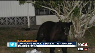 Collier man has cheap solution to bears getting in trash: use ammonia - Video