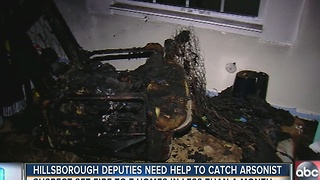 Hillsborough deputies need help to catch arsonist - Video