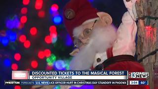 Discounted tickets to Magical Forest - Video