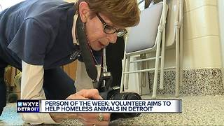 Person of the Week: Volunteer aims to help homeless animals in Detroit - Video