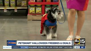 PetSmart holding a Halloween Spooktacular event for your four-legged friends