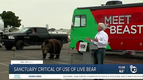 Cox, with Tag the Kodiak bear, makes campaign stop in San Diego