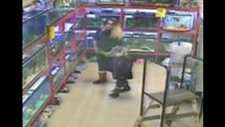 Thief Caught on Security Camera Putting Tortoises in Her Purse
