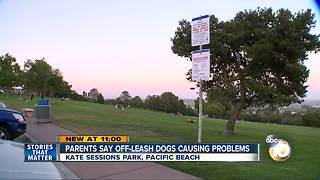 Parents say off-leash dogs causing problems - Video