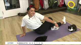 Yoga with feline friends at the Cattyshack Cafe in Fort Myers