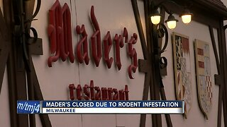 Mader's Restaurant temporarily closed due to rodent infestation