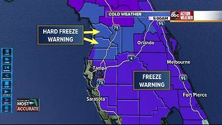 Freeze Warnings issued for Tampa Bay area - Video