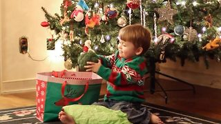 Boy Is Excited To Receive Christmas Present Full Of Vegetables - Video