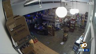 Thieves Bust Into Shop to Steal Flea Medicine - Video