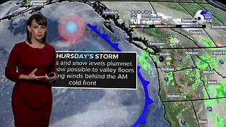 Cooler, cloudy Wednesday ahead of a cold and blustery Thursday - Video
