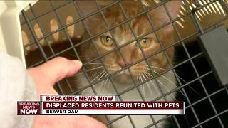 Displaced residents reunited with pets after Beaver Dam explosion - Video