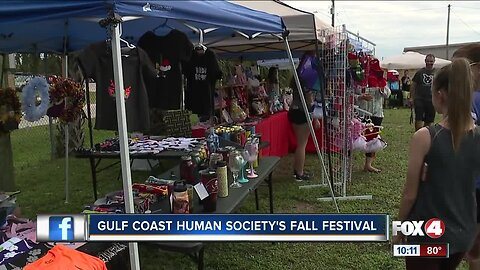Gulf Coast Humane Society hosts fall festival