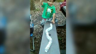 Toddler Boy Learns All About Domino Effect