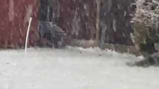 Snow Falls in South Yorkshire as Met Office Issues Yellow Weather Warning - Video