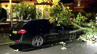 Lightning strike topples tree onto BMW - Video