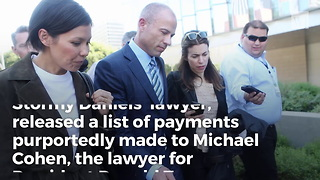 Stormy Daniels' Lawyer Accuses Wrong Michael Cohen of 'Fraudulent' Payments - Video