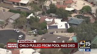 Child dies after being pulled from a Phoenix pool - Video