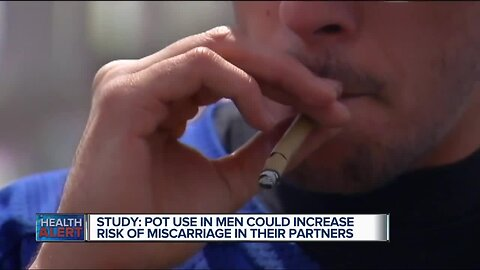 Ask Dr. Nandi: Study links frequent male marijuana use to early miscarriages