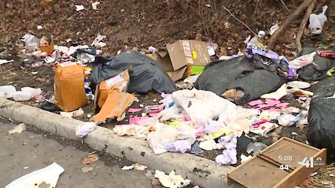 'Not our trash': Neighbors frustrated by trash piles linked to KCMO pet store