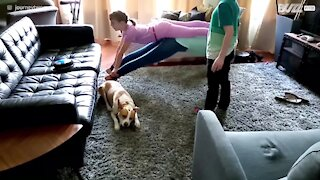 "Family fails the ""Plank That Song"" challenge"