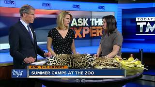 Ask the Expert: Summer camps at the zoo - Video