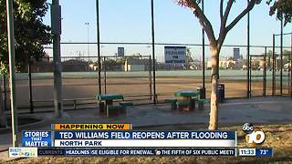 Ted Williams Field in North Park reopens after flooding