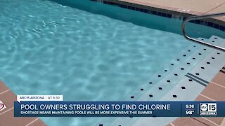 Maintaining pool could get pricier this summer due to chlorine shortage