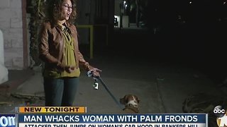 Man whacks woman with Palm fronds in Bankers Hill - Video