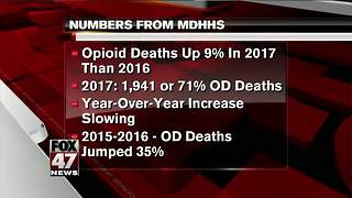 Michigan opioid deaths hit new record - Video
