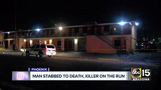 Man stabbed to death near Phoenix hotel, suspect on the run - Video