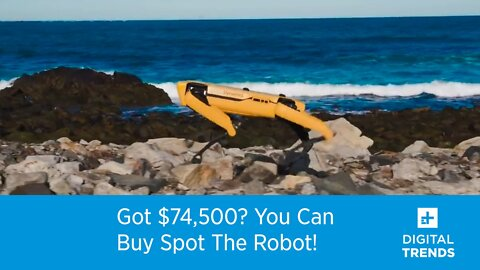 Got $74,500? You Can Buy Spot The Robot Dog!
