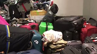 Luggage Piles Up at JFK Airport Following Water Leak, Weather Issues - Video