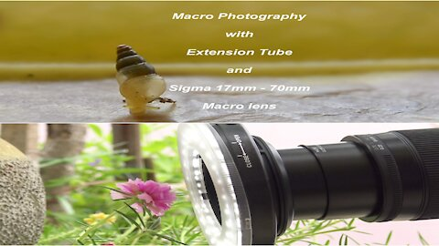 Sigma 17mm 70mm Macro lens and Extension Tube