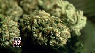Group to submit signatures to legalize marijuana in Michigan - Video