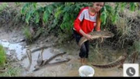 Beautiful Girl Fishing - Amazig Fishing at Battambang - Cambodia Traditional Fishing(part1)