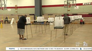 Issues with primary election ballots