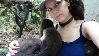 'Polish Dr Dolittle' Takes Care of Baby Woolly Monkeys - Video
