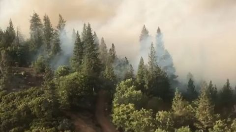 Aerial Footage Shows Forests Set Ablaze by Mendocino Complex Fires