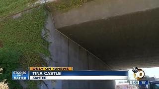 Santee woman escapes assault by urinating on attacker - Video