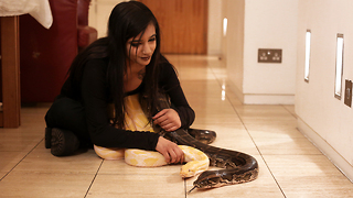 I Share My Bedroom With A 16ft Python  | BEAST BUDDIES - Video
