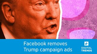 Facebook takes down Trump campaign ads for using Nazi symbol