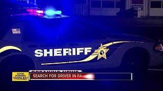 Deputies search for driver involved in fatal hit-and-run in Tampa - Video