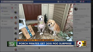 Family fights porch pirates with box of dog poo