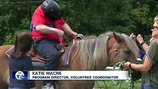 Seeking therapy? Try horseback riding - Video